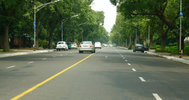 Save Trees in Delhi: Know the procedure to cut a Tree