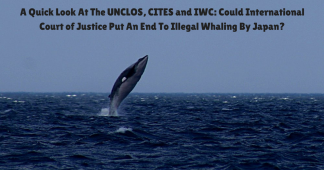 A Quick Look At The UNCLOS, CITES and IWC: Could International Court of Justice Put An End To Illegal Whaling By Japan?