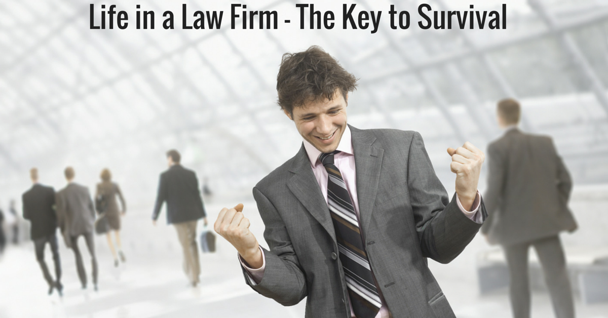 how to enter into a good law firm