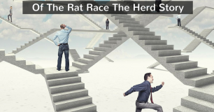 Of The Rat Race The Herd Story