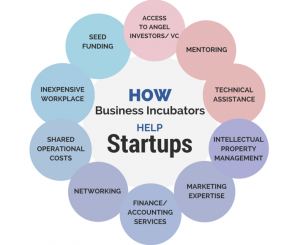 know-how-business-incubator-can-help-launch-blog-image-2