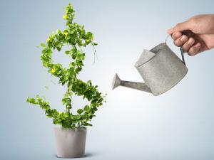 money-invest (1)