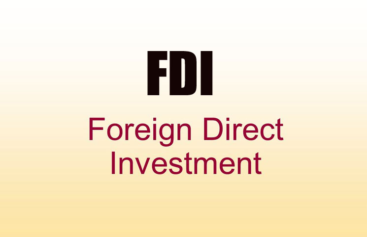 disadvantages of foreign investment