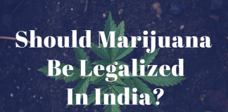 marijuna legalization