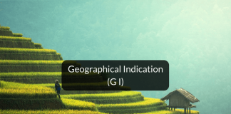 What is Geographical Indication or GI