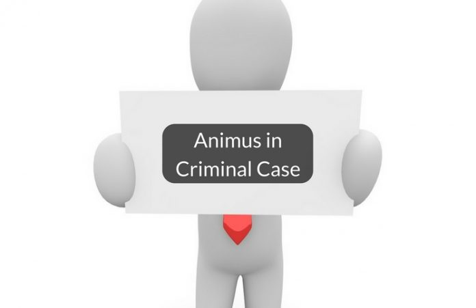 What is Animus