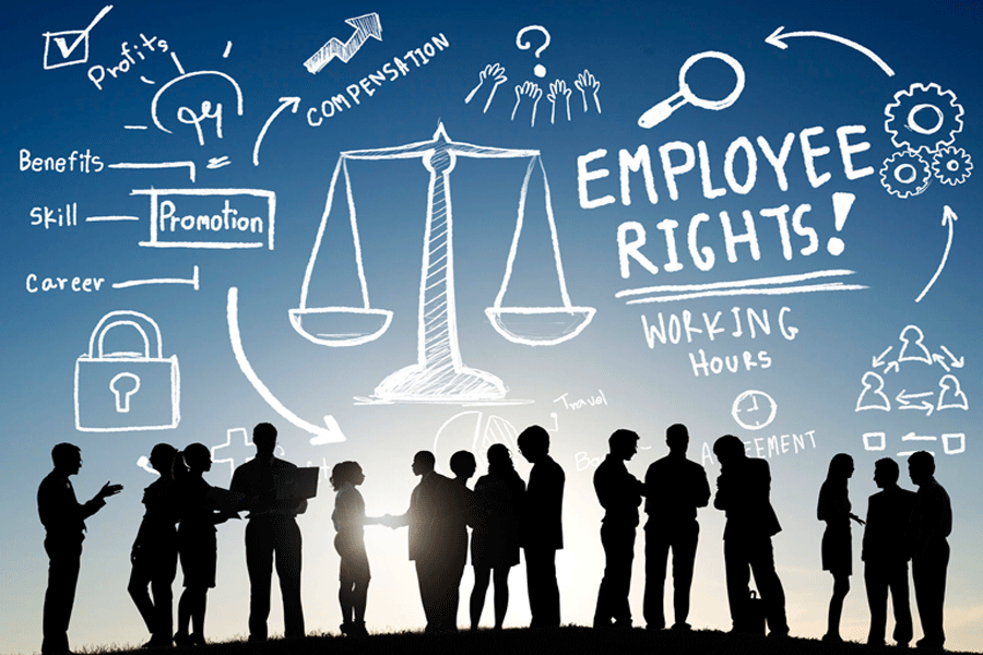 13 laws that every HR should know in India to be the best at