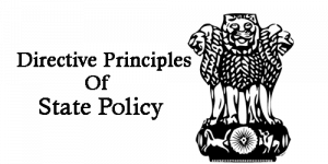 directive principles meaning