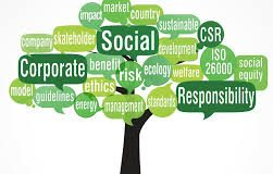 components of CSR reporting