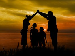 family law: Adoption, guardianship, succession