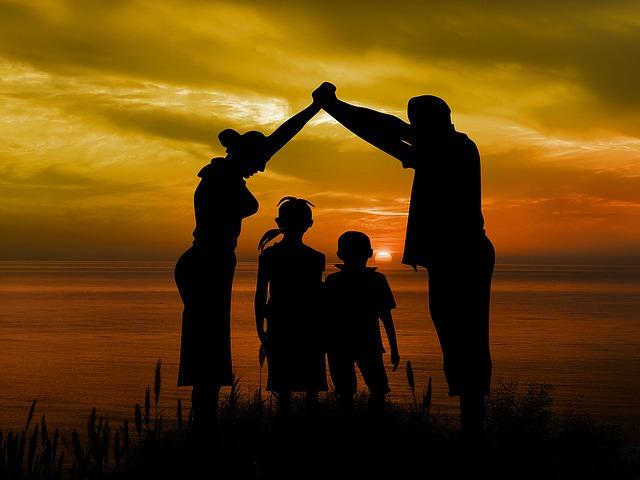 family law: Adoption, guardianship, succession