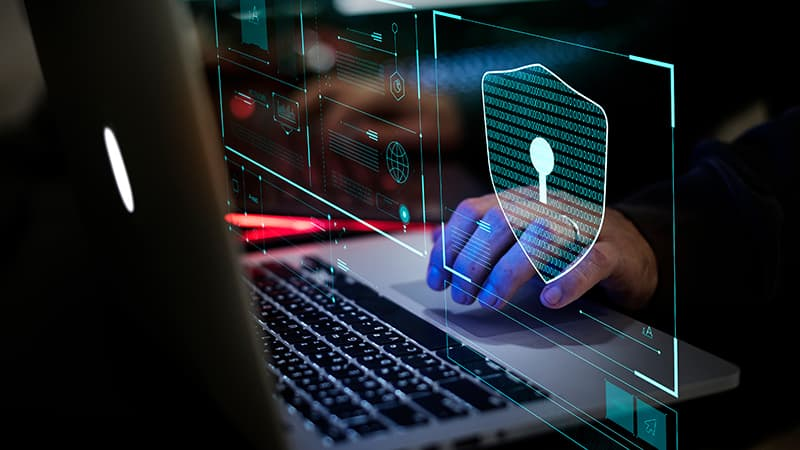Indian cyber legal