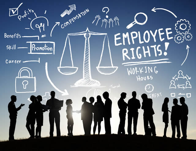 Labour Laws for Employees