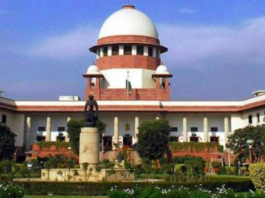 appeal and transfer of cases