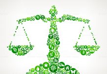Sources of international environmental law