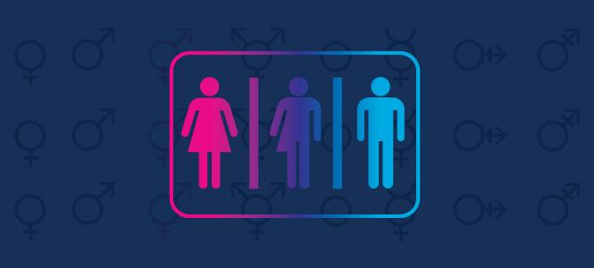 Gender Discrimination Laws