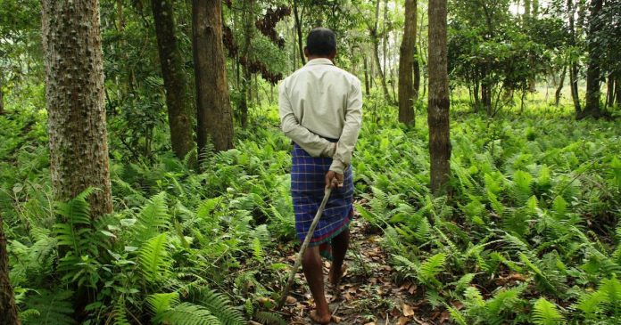Forest Rights Act in India