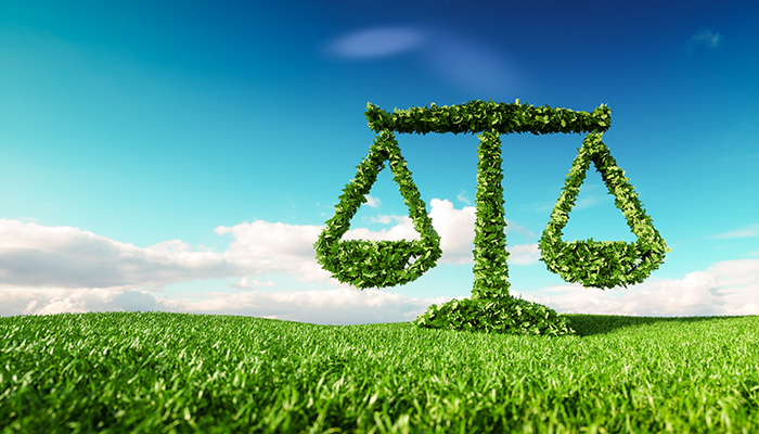 A comparative approach by NGT and Judiciary in dealing with environmental cases – iPleaders