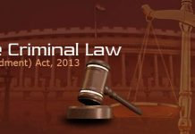 Criminal Amendment Act 2013