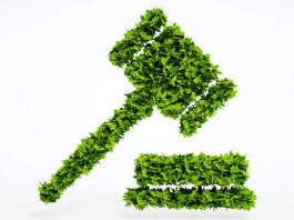 Criminal laws for Environment